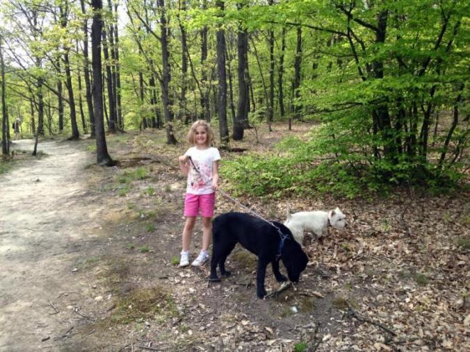 Gradina botanica - gradina zmeilor dogs