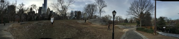Manhattan - central park view