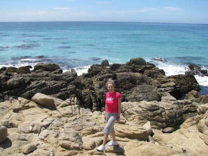 Monterey - 17 mile drive beach