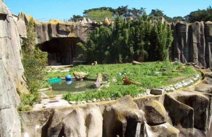 San Francisco - zoo