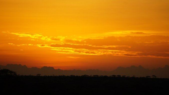 Serengeti - sunrise.1jpg