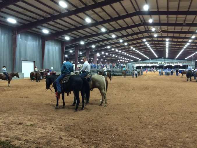 Texas - rodeo