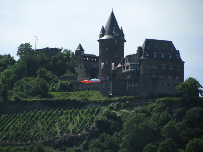 Valea Rinului - castle