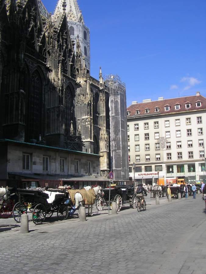 Viena - rathaus