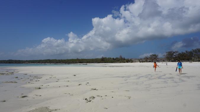 Zanzibar Tanzania - beach1