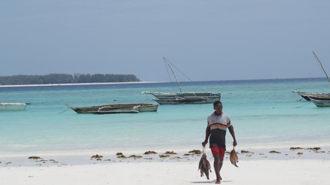 Zanzibar Tanzania - mnemba