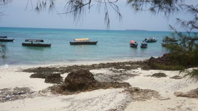 Zanzibar - prison island boats
