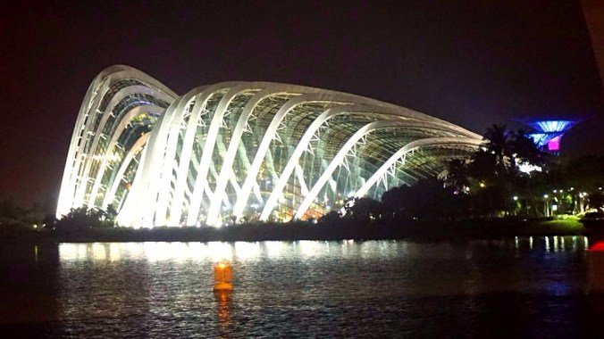 Singapore - Botanical garden by night