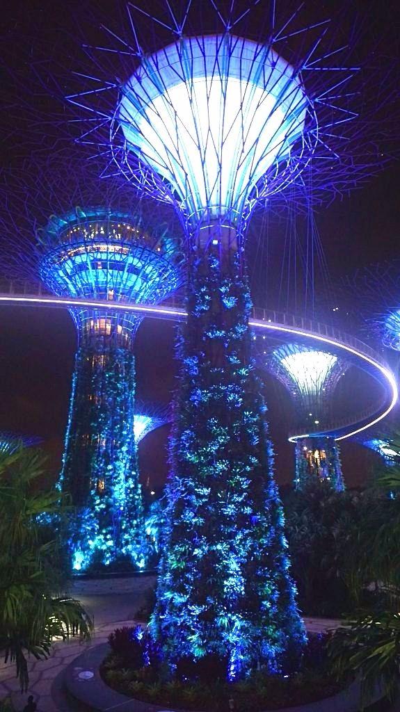 Singapore - Gardens Bay1