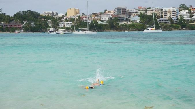 Guadeloupe - gosier island3
