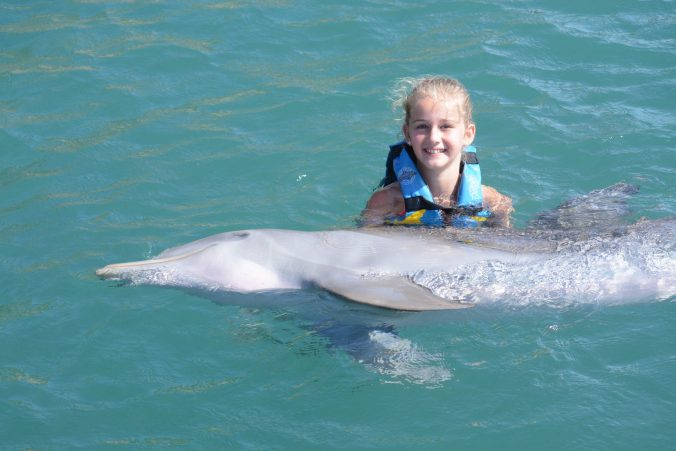 St. Kitts si Nevis - dolphin hold
