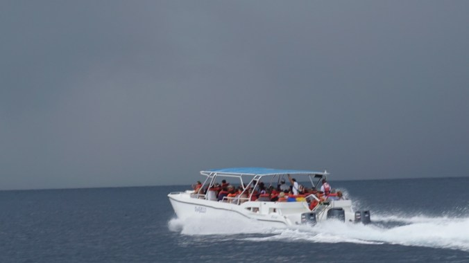 croaziera in caraibe - speed boat to saona