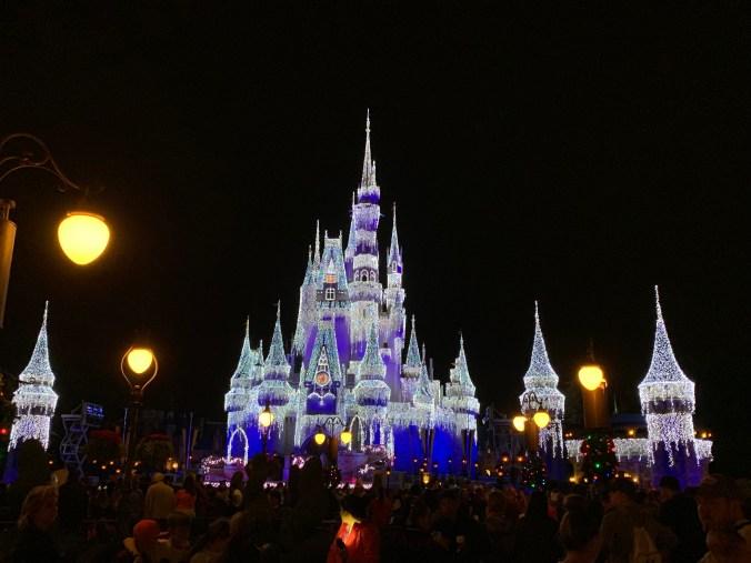 Magic Kingdom6