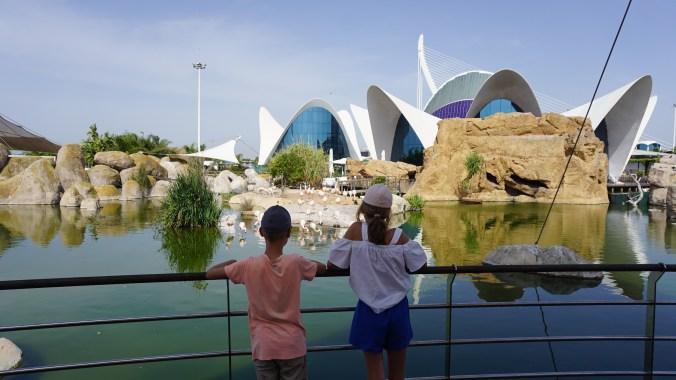Valencia - Ciutat de les Arts i les Ciencies6