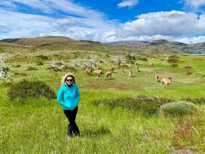 Patagonia - Torres del Paine8