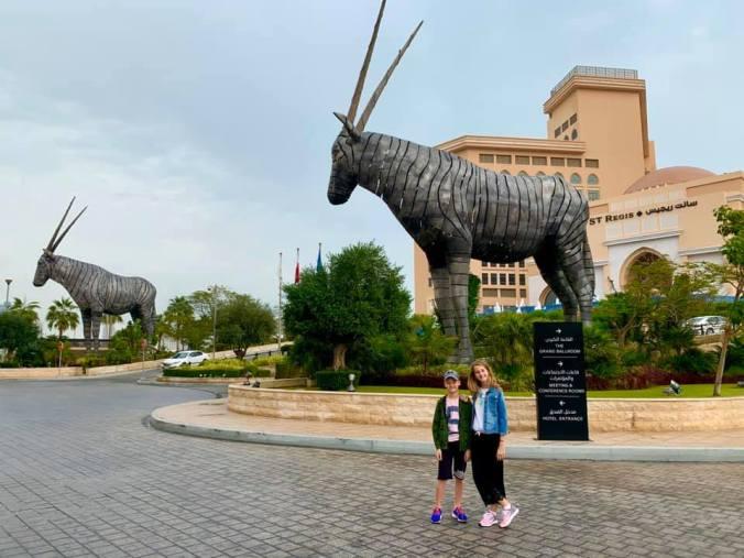 doha - oryx