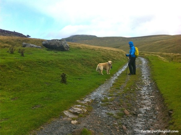 UK 2014 - 1° Climbing Ingleborough Mountain - Bentham - 11