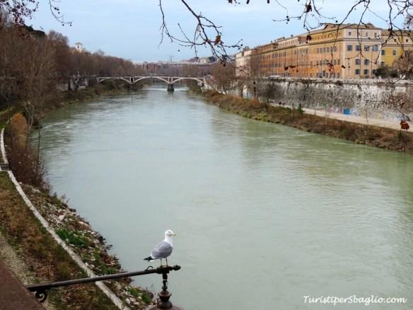 Roma, Lungotevere