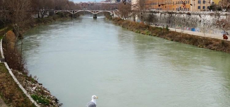 3) Roma questa sconosciuta, Porta Portese