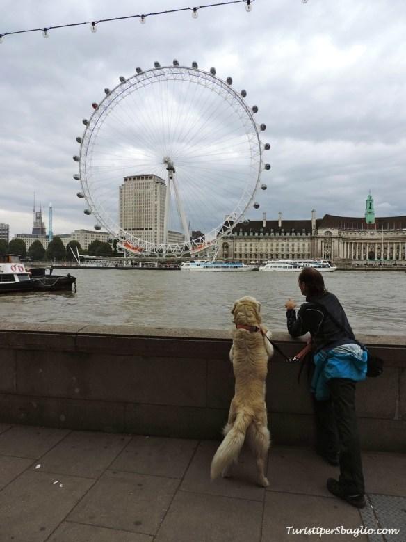 UK 2014 - London - 0125