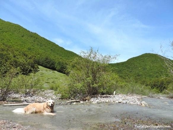 Parco Nazionale del Pollino - 03