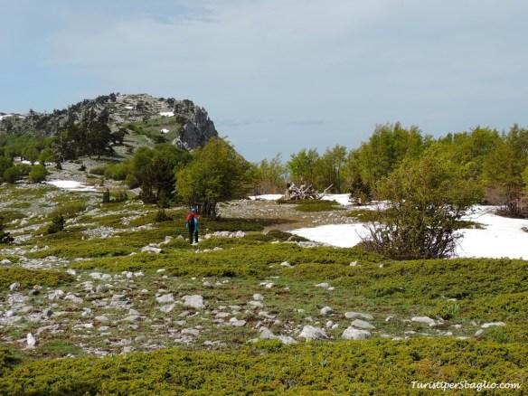 Parco Nazionale del Pollino - 23