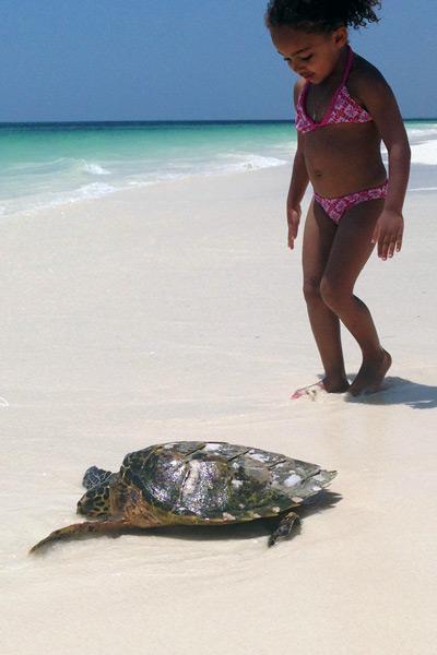 Viaggio-in-Kenya-con-bambini-tartaruga-watamu
