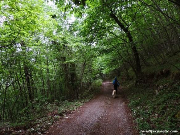 Acquafredda di Maratea, Passo Colla - 58_new
