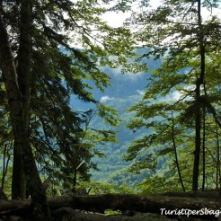 Hiking on Lake Bohinj Slovenia - 21_new