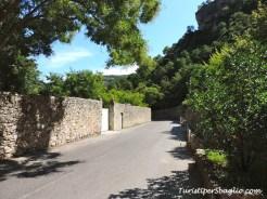 Linguadoca - San Guglielmo nel Deserto - Saint-Guilhem-le-Désert - 15_new