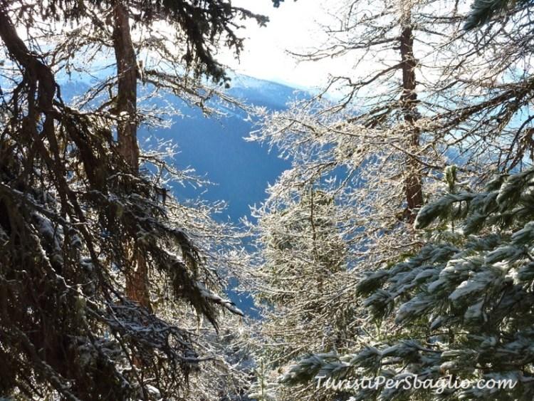 chandolin-svizzera-vallese-sentiero-per-le-ciaspole-10_new