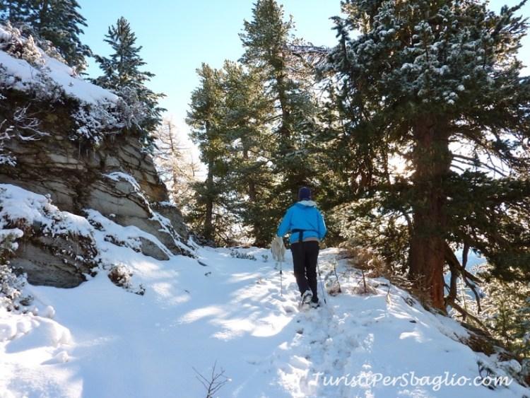chandolin-svizzera-vallese-sentiero-per-le-ciaspole-5_new