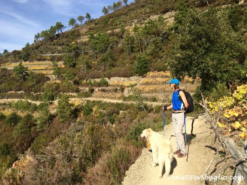 Parco Nazionale delle 5 terre: il sentiero di montagna da Corniglia a Manarola