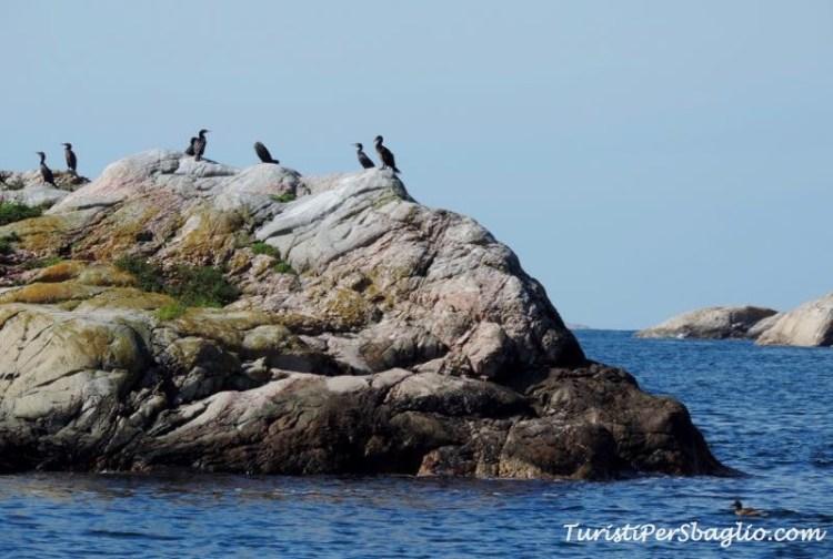 Arcipelago del Bohuslan, Svezia Occidentale