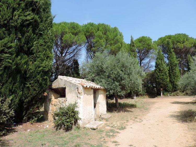 Castello di Lourmarin, il Parco Uliveto