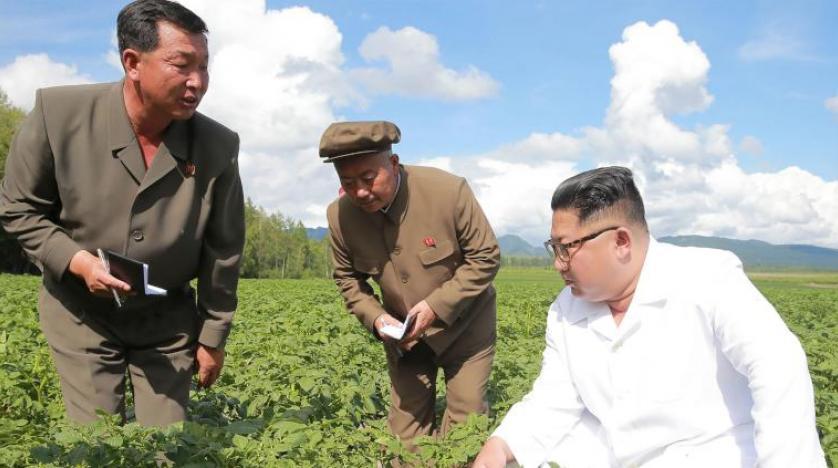 Kim-Pompeo görüşmesine 'patates' engeli
