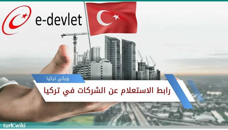 رابط الاستعلام عن الشركات في تركيا من اي دولات