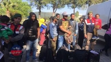 الدرك التركي يضبط 248 مهاجرا غير نظامي حاولوا التسلل خارج البلاد