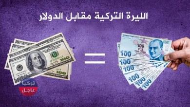 100 دولار كم ليرة تركية تساوي .. الليرة التركية مقابل الدولار وبقية العملات اليوم السبت