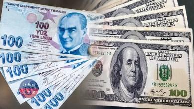 100 دولار كم ليرة تركية