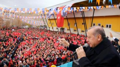 NATO scandal, Erdogan, support, Turkey