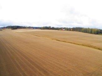 Finlandiyada kırsal.