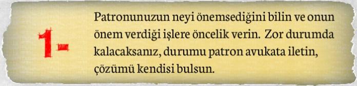 satirnew1