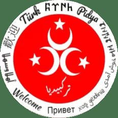 Turkpidya