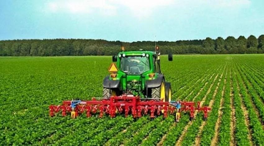 الزراعة في تركيا