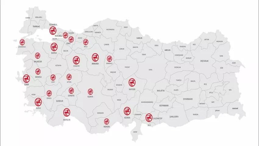 Rossmann Turkey stores