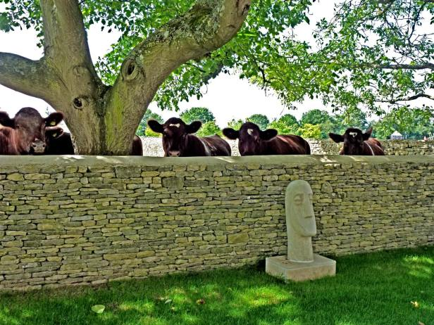 cows wall