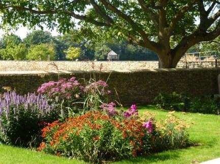 garden P1040333