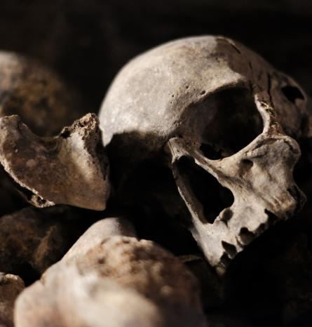 Der würdelose Tod