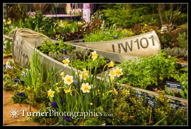 https turnerphotographics com 2020 02 26 northwest flower garden show 2020